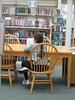 Reading after school by DAML Williston