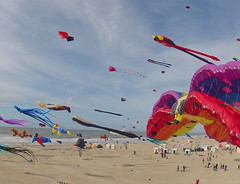 2012 Berck Kite Festival by Pierre Lesage