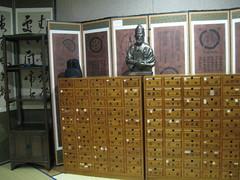 2012-1-korea-112-daegu-museum of oriental medicine