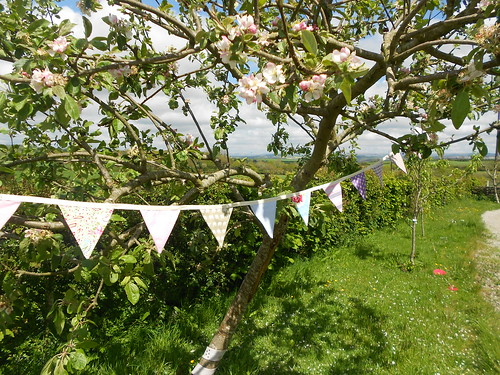 Bunting in the breeze