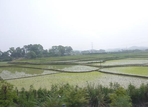 c-guangxi-route nanning-yangshuo (77)