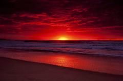 [フリー画像素材] 自然風景, ビーチ・海岸, 朝焼け・夕焼け, 水平線 ID:201206192000