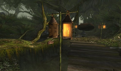 Home Sweet Swamp_002