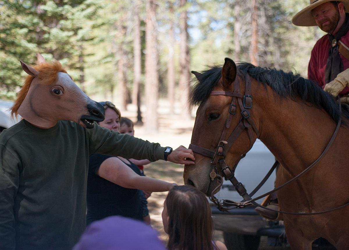 Nice Horsey