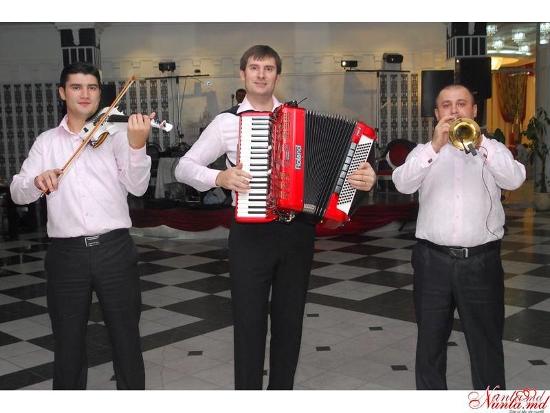 """Виктор Кожокару и группа """"Maestro"""" > Фото из галереи `Главная`"""