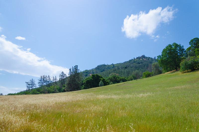 Mount Diablo park
