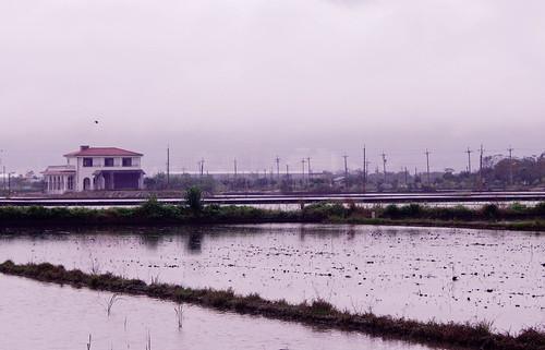 宜蘭農舍數量佔搭排農舍的2/3,農田種不出糧食而是房子。(攝影:陳寧)