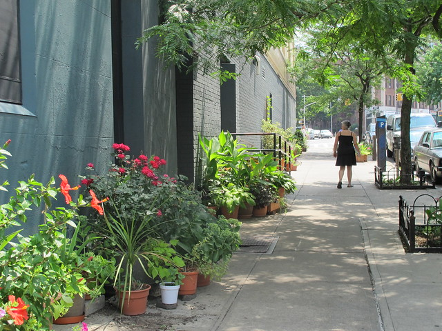 Sterling Place between Flatbush Avenue and 7th Avenue, Park Slope
