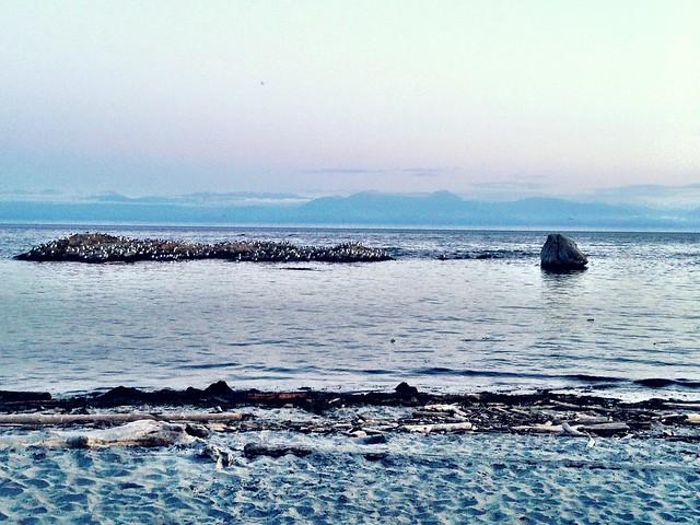 Photo:High tide & brrrrrrrr tonight #yyk By Suzer Jones