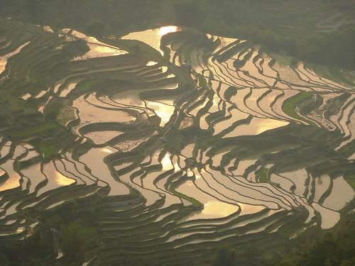 Yunnan13-Yuanyang 24-Bada (25)