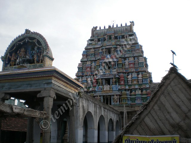 TirupatturBrahmapureeswararKoil