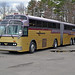Wilson Bus Lines 6000 by mbernero