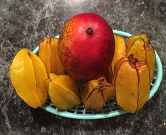 Tropical Fruit - Mango and Star Fruit