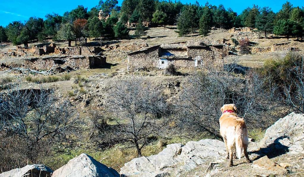 Última mirada a las Casas de Santa Olaya