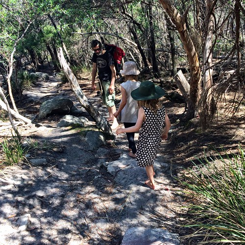 Wineglass Bay. Walking up a saddle between the Hazards.