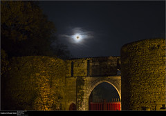 20161114_Castle and super moon