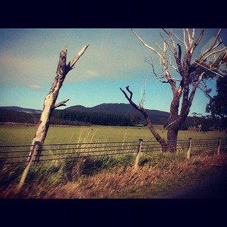 On The Highway To Deloraine