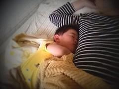 【お昼寝】お父さんの脇の下に突進します (2012/5/13)