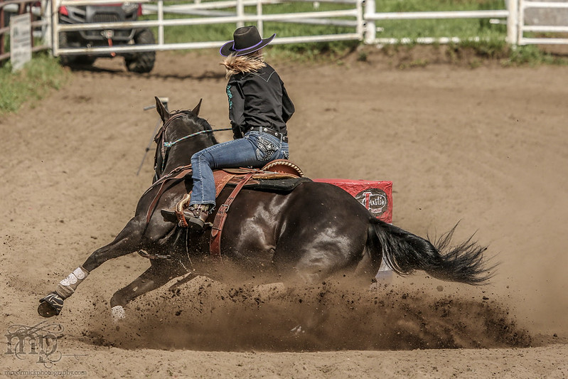 Gooseberry Lake : 4-H Rodeo 2013 : They've Done This Before