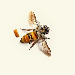Steampunk honey bee