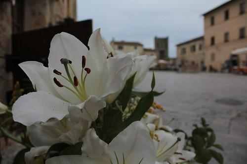 Monteriggioni: scorcio della piazza principale