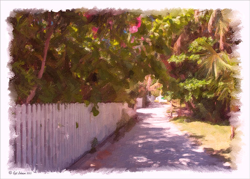 Image of path on Great Guana Cay in the Bahamas