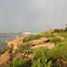 Rocks Nature - Ammenpur Lake, Hyderabad - 2