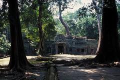 Ta Prohm - Jungle Temple