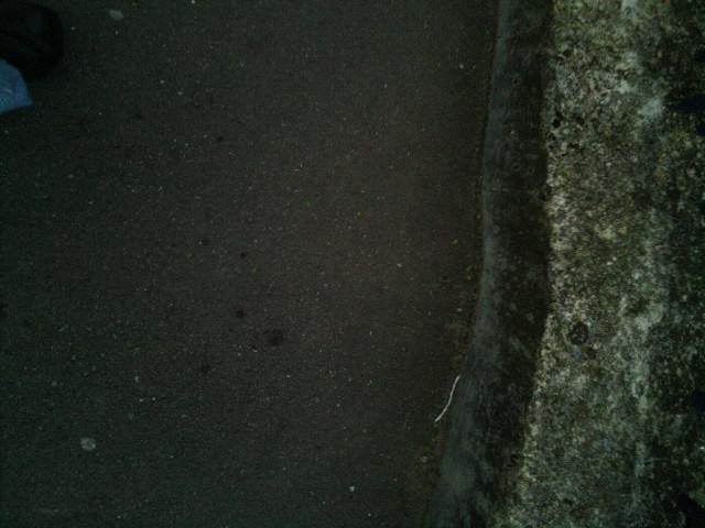 PIC_2641