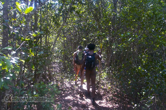 naturist 0004 Gator Hook Trail, Big Cypress National Preserve, Florida, USA