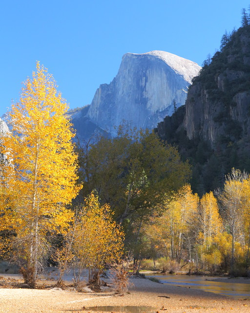 IMG_3307 Autumn Foliage in Yosemite Valley