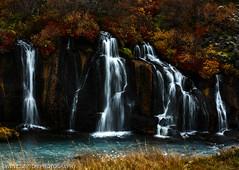 Beautiful waterfalls - Hraunfossar, Iceland