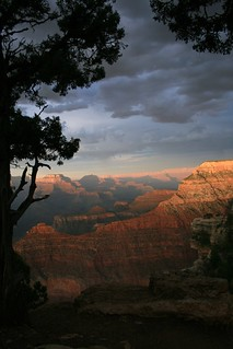 Evening at the Canyon
