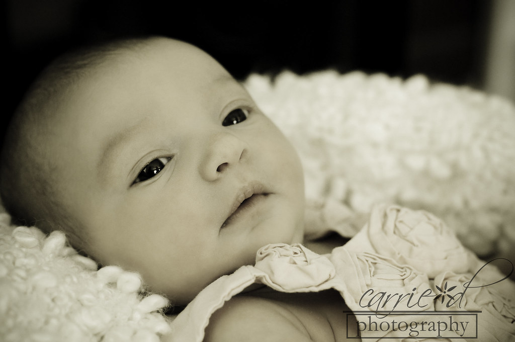 Alexandria Newborn Photographer - Finley 4-8-2012 (9 of 437)BLOG