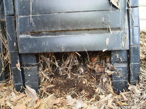Compost Bin 2