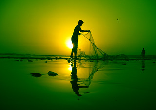 Cleaning the Net