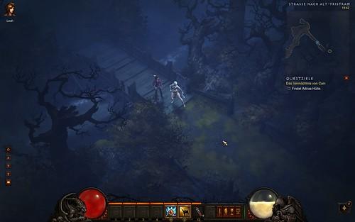Diablo 3 Leah