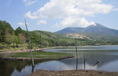 新緑の女神湖と蓼科山 2013年5月25日13:28 by Poran111