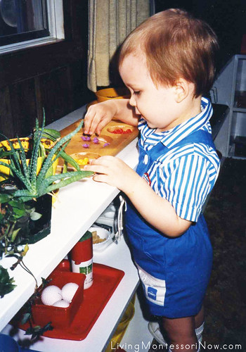 Will in the Montessori Classroom at Age 2, 1987