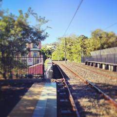 I love #sydney #trams