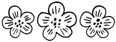 3 Flowers Linework Sketch