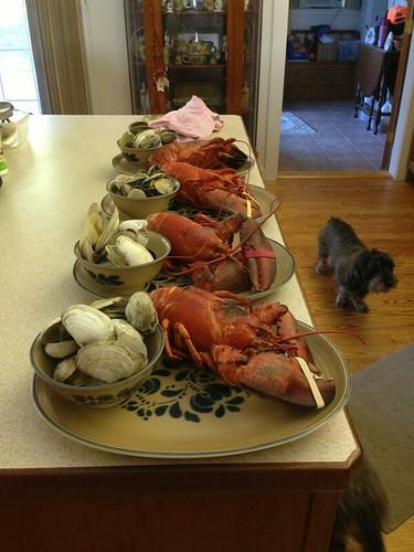 Lobstah 1