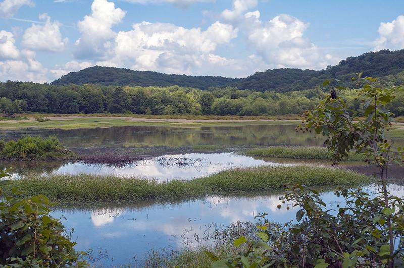 North Fork Wildlife Areas