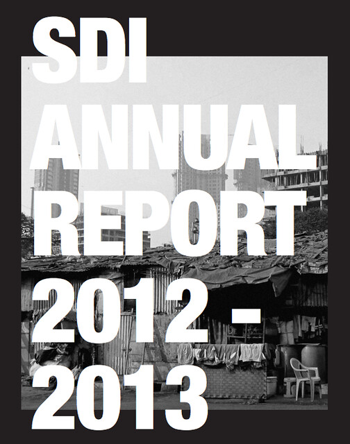 SDI Annual Report 2012 / 13