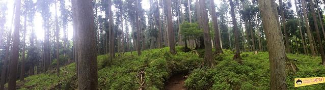 Hiking Mt. Nabewari - day trip from Tokyo - views 2