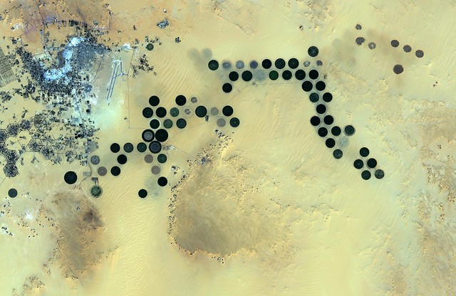 Libya's Al Jawf oasis