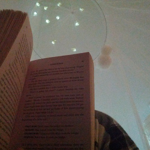 A picture of my Sookie Stackhouse novel resting on my knee, in plaid pyjama's. You can see my musquito net canopy with bows, some pompoms and string lighting. My bed is a fort.