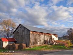 Farms & Farmland