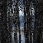Sotkajärven sininen hetki