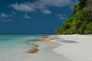 Image of Beach with a length of 981 meters. beach sand nikon maldives d4 caproni nikond4 kendhoo northprovince